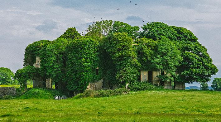 Go Strandhill - Lisheen House